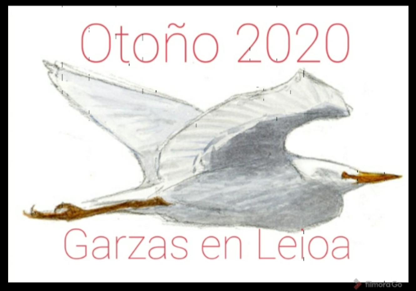 video_garzas_leioa